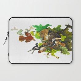Ferruginous Thrush John James Audubon Vintage Birds Of America Illustration Laptop Sleeve