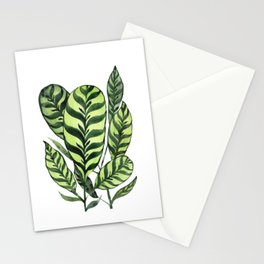 Ctenanthe Stationery Cards