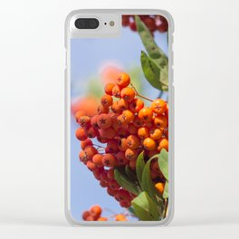 Bunch of rowan Clear iPhone Case