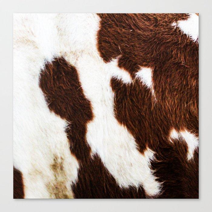 Cowhide Brown Spots Leinwanddruck