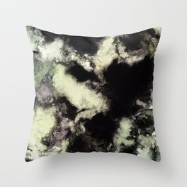 Chamber Throw Pillow