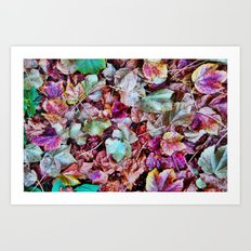 Autum Leaves Art Print