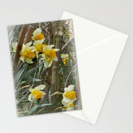 Daffodils from England Stationery Cards