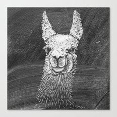 Black White Vintage Funny Llama Animal Art Drawing Canvas Print
