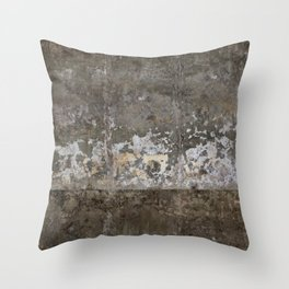 Abandoned Factory Throw Pillow