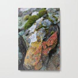 Diamond in the Moss Metal Print