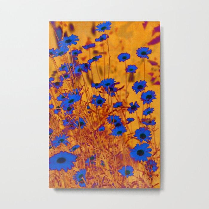 Luminous Daisies Metal Print
