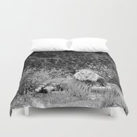 south africa Duvet Covers featuring Male Lion, Kgalagadi, South Africa by Shannon Wild