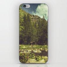 Alpine Idyll iPhone & iPod Skin