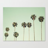 palm trees Canvas Prints featuring Palm Trees  by Laura Ruth