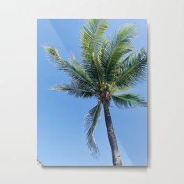 Palm Tree and Blue Sky Metal Print