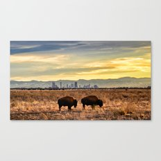 Home on the Front Range Canvas Print