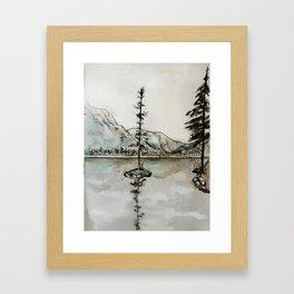 Old Pine IV Framed Art Print