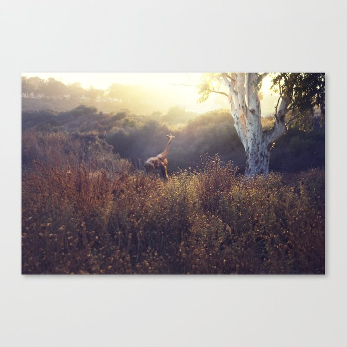 last time here Canvas Print