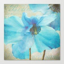 Blue Himalayan Poppies Canvas Print