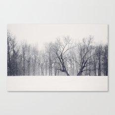Into the Blizzard Canvas Print