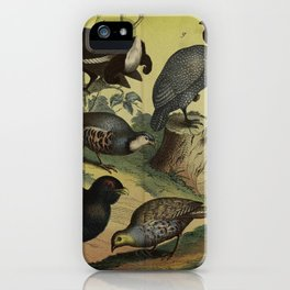 022 perdix coturnix Willow Ptarmigan or Red Grouse Black Grouse Western Capercaillie Common Partridge Red legged Partridge Rock Partridge Helmeted Guineafowl gallus domesticus germanicus10 iPhone Case