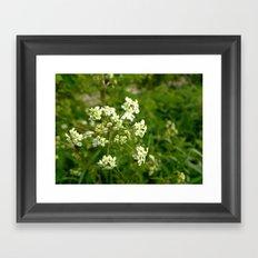White Water Hemlock Framed Art Print