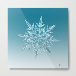 Blue Green Ice Crystal Metal Print