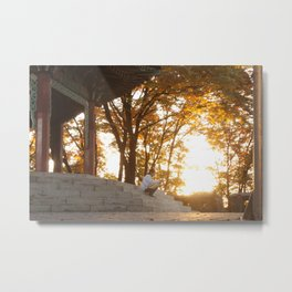Autumn on Namsan Metal Print