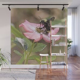 Bumble Bee on a Rose Wall Mural