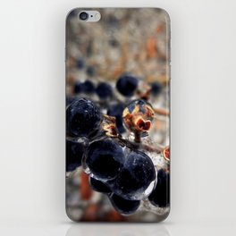 Cryogenic iPhone Skin