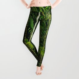 Tropical Bamboo Palm Forest Leggings