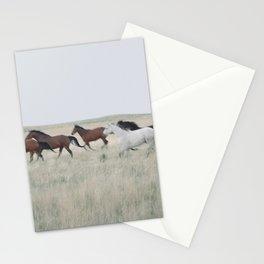 colorado horse dreams Stationery Cards