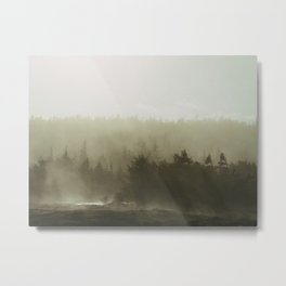cloudy conifers Metal Print