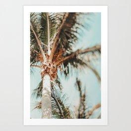 Coastal Palm Trees Art Print