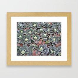 Coles Framed Art Print