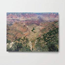 down in the canyon Metal Print