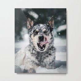 Dog in Snow Metal Print