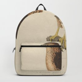 Grey bellied Goshawk 23 Backpack