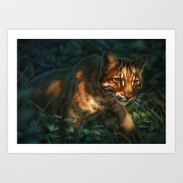 Golden Cat Art Print