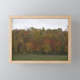 Autumn's Colors Framed Mini Art Print