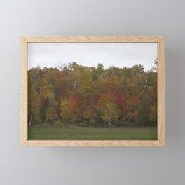 Autumn's Colors Framed Mini Art Print