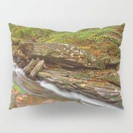 Ricketts Glen Autumn Stream Pillow Sham