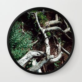 The Root Wall Clock