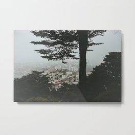 Buena Vista Park, San Francisco Metal Print