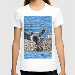 Seal Flips out on crowded rock T-shirt