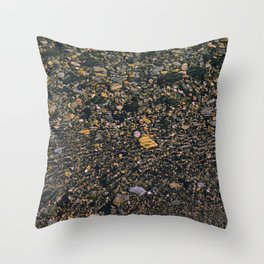 shale shock Throw Pillow