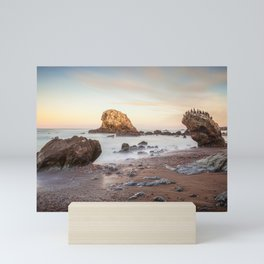 San Simeon State Beach, California Mini Art Print