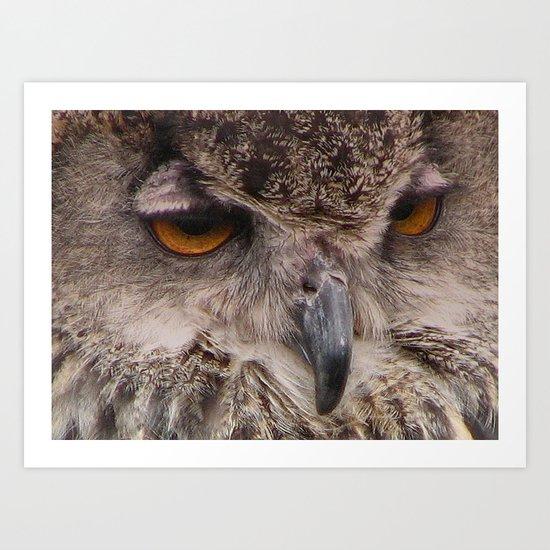 OWL (Strigiforme) Art Print