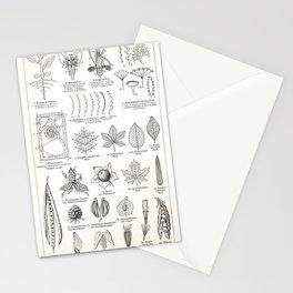 Meyer's Blitz-Lexikon - German Visual Dictionary (1932) - Botany Stationery Cards