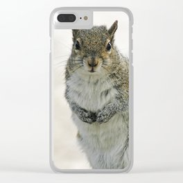 Gray Squirrel Clear iPhone Case