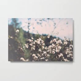 Faded white flowers on the side of a mountain Metal Print