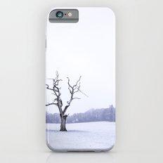 Portrait of a Tree iPhone 6s Slim Case