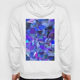 Matisse Blue Hoody