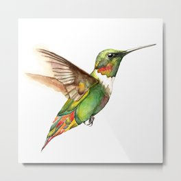 Hummingbird Magic Metal Print